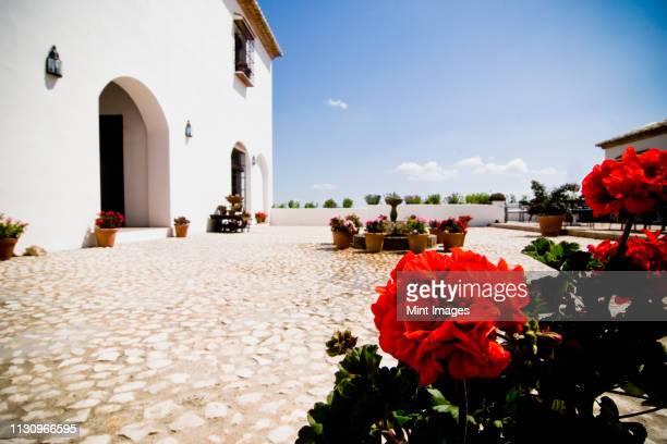 courtyard of hotel - andalucia fotografías e imágenes de stock