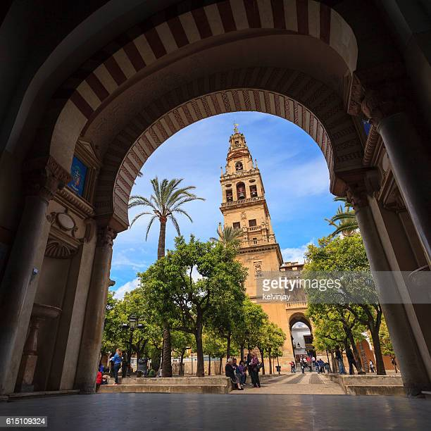 Courtyard of the Mezquita in Cordoba, Spain