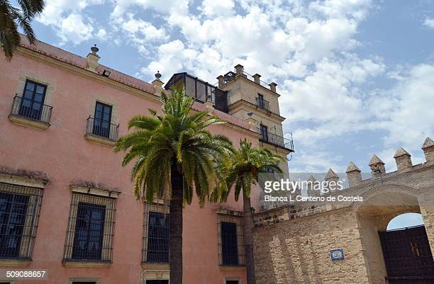 Courtyard of the Real Alcazar of Jerez de la Frontera in Cadiz, Spain. The Alcazar of Jerez was built in the twelfth century by the Almohads and is...