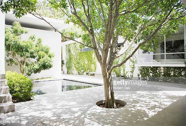 courtyard - courtyard stock pictures, royalty-free photos & images