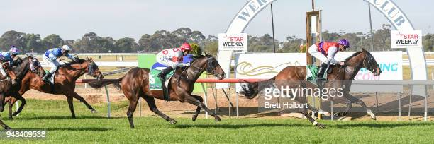 Coutinho ridden by Jye McNeil wins the Werribee Car Wash Maiden Plate at Werribee Racecourse on April 19 2018 in Werribee Australia