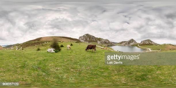 covadonga lakes. asturias. spain - vr 360 fotografías e imágenes de stock
