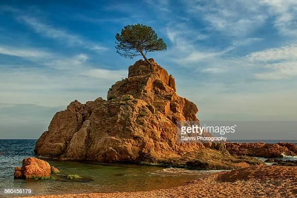 Cove in Tossa de Mar
