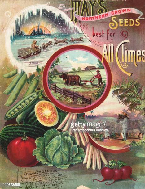 Cover for May's seed catalog from Shenandoah Iowa with farm scenes and produce images c1890