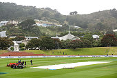 wellington new zealand cover lies wicket