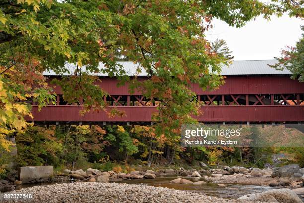 covered bridge by trees against sky - covered bridge stock photos and pictures
