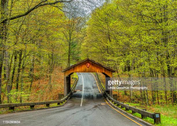covered bridge - covered bridge stock pictures, royalty-free photos & images