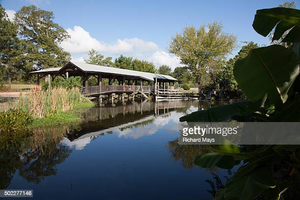 covered bridge - shreveport stock pictures, royalty-free photos & images