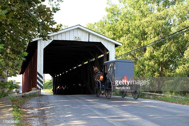 covered bridge with amish horse and buggy - covered bridge stock photos and pictures