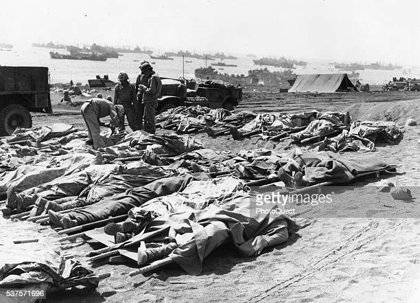 Covered by their ponchos the bodies of dead Marines from the 3rd Marine Division lie on stretchers on a beach as they await identification Iwo Jima...