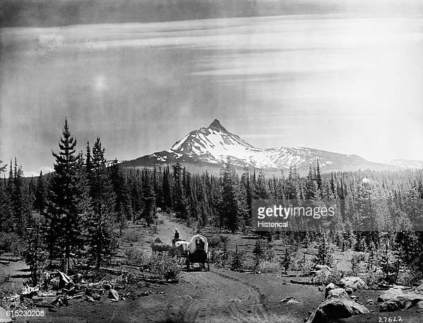 A covered wagon travels a trail through the lodgepole pine forest below Mt Washington in Oregon