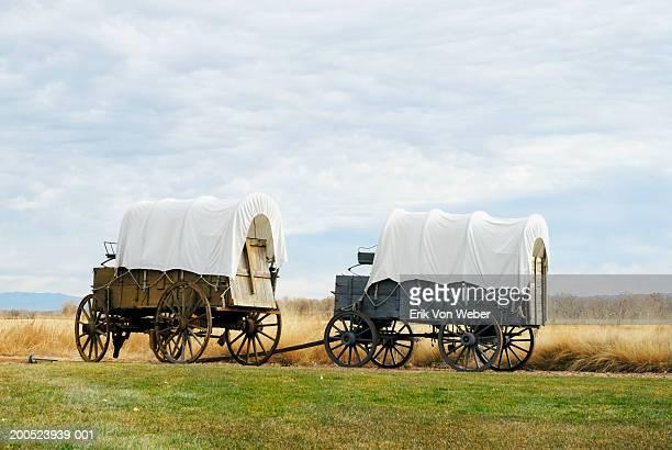 covered wagons on dirt road in prairie - pferdeantrieb stock-fotos und bilder