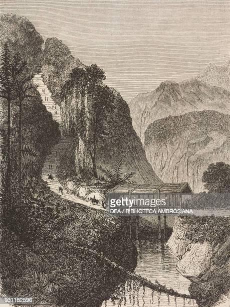 Covered wooden bridge on the Tondano road Sulawesi island drawing by Hubert Clerget from The Malay Archipelago 18611862 by Alfred Russell Wallace...