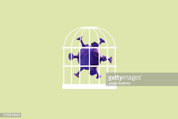 covid-19 low poly design virus inside a bird cage - covid icons stock pictures, royalty-free photos & images