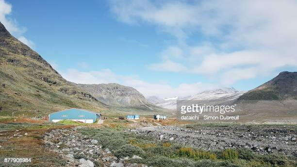 Cow farm in Narsaq