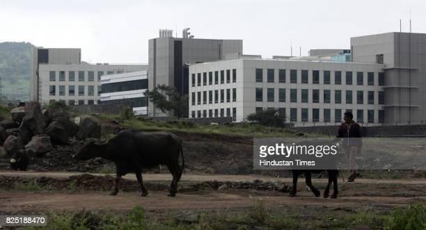 Cow Hinjewadi IT Park phase 3 is still under constuction Pune