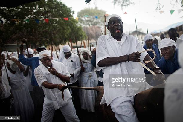 A cow is slaughtered and bled as part of an initiation ritual voodoo on April 08 2012 in Souvenance Haiti Voodoo is a religion born over 200 years...