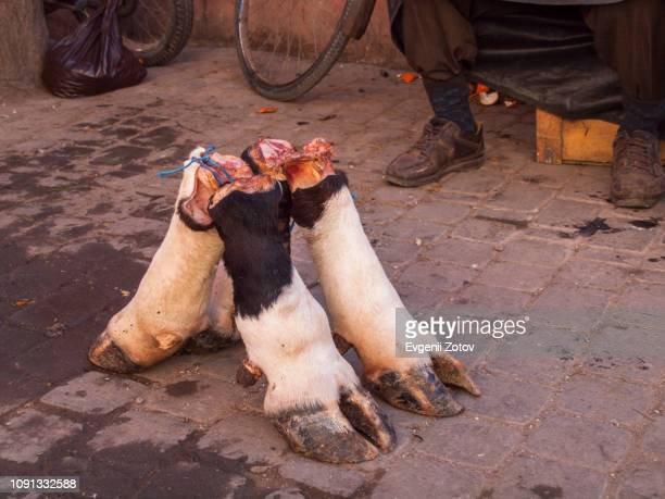 Cow legs for sale at street market in Marrakesh, Morocco