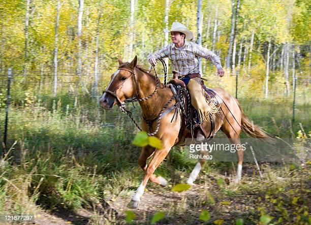 Cowbly auf einem Pferd