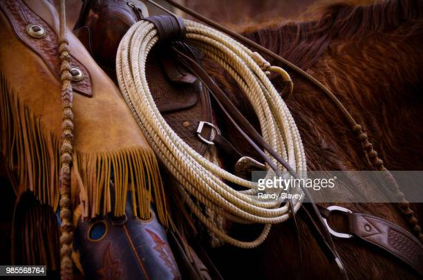 cowboy 3 - cowboy stock pictures, royalty-free photos & images