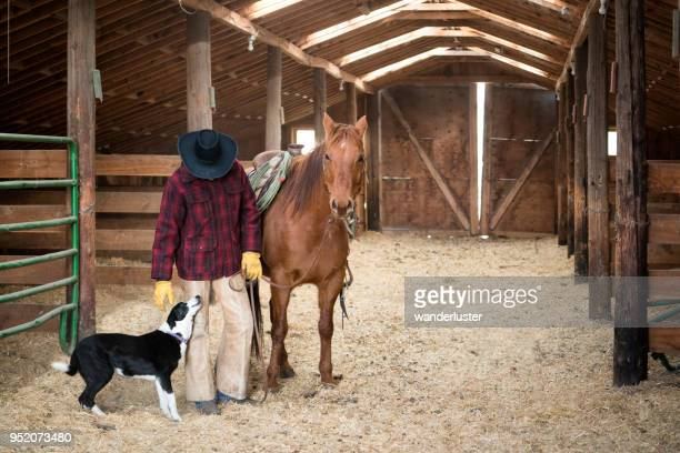 cowboy affectionate with his border collie dog - market stall stock pictures, royalty-free photos & images