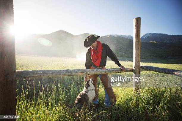 cowboy and his dog bonding at sunrise - ranch stock pictures, royalty-free photos & images