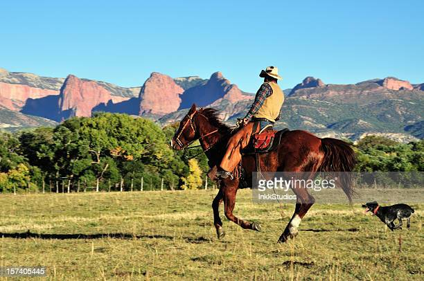 cowboy and his dog - australian cattle dog stock photos and pictures