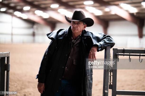 cowboy at a horse stable - sheriff stock pictures, royalty-free photos & images