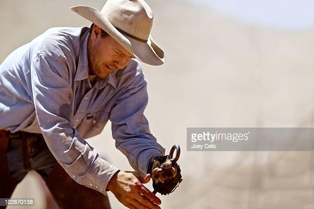 Cowboy branding cattle