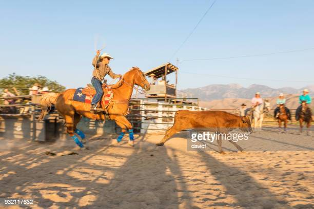 Cowboy Competes at Steer Roping at a Sunset Dusty Rodeo