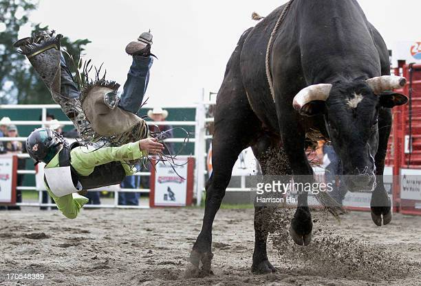 Cowboy competes in bull riding contest at the 2013 Cloverdale Rodeo in Surrey, British Columbia, canada.May 18, 2013. Cloverdale Rodeo and Country...