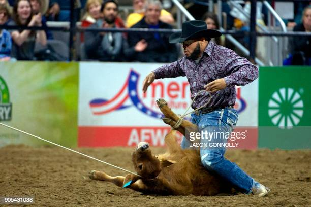 A cowboy competes in the Men's Tie Down Calf Roping during the MLK Jr African American Heritage Rodeo at the National Western Stock Show in Denver...
