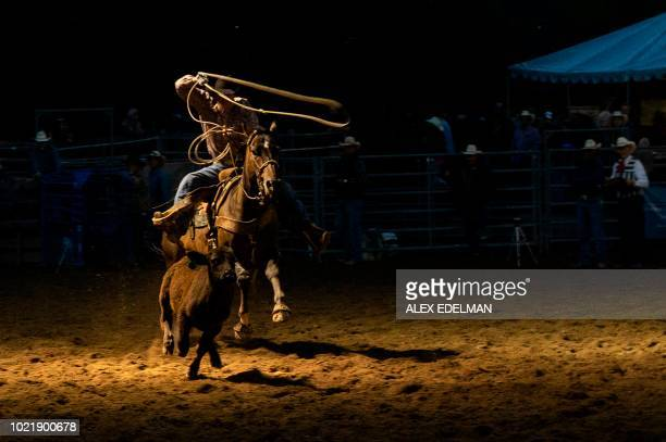 TOPSHOT A cowboy competes in the team roping event at the Snowmass Rodeo on August 22 in Snowmass Colorado The Snowmass rodeo is on its 45th year...