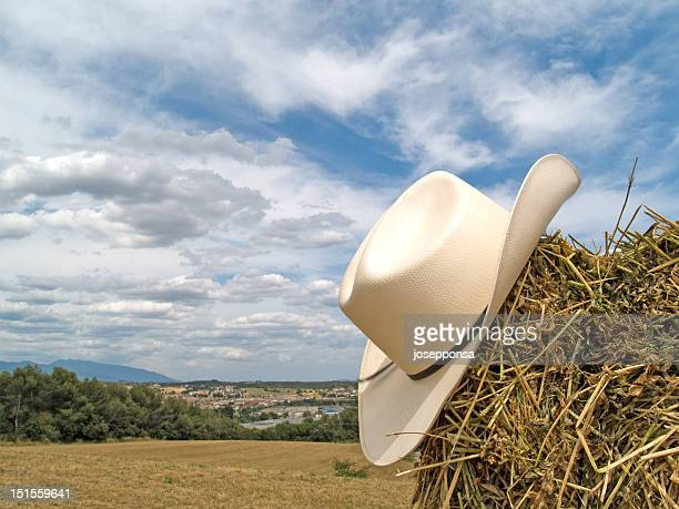 cowboy hat in the straw - cowboy hat stock photos and pictures