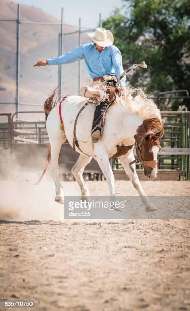 Cowboy klemt op tot een Bucking Bronco bij de Rodeo