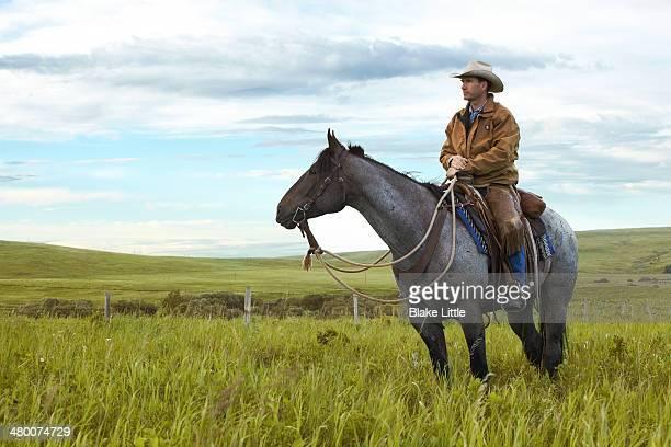 cowboy in landscape - cowboy stockfoto's en -beelden
