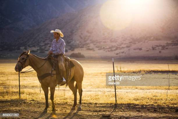 Cowboy in the Morning Light