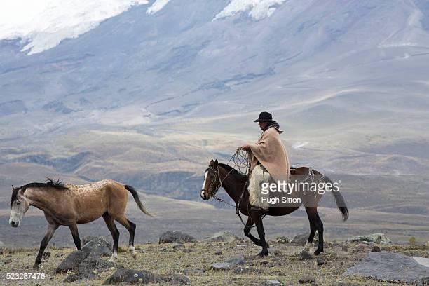 cowboy in traditional costume, cotopaxi national park, ecuador - hugh sitton fotografías e imágenes de stock