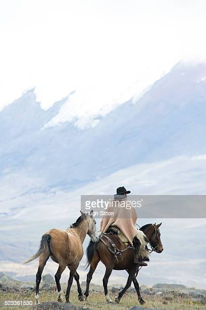 cowboy in traditional costume, cotopaxi national park, ecuador - hugh sitton stock pictures, royalty-free photos & images