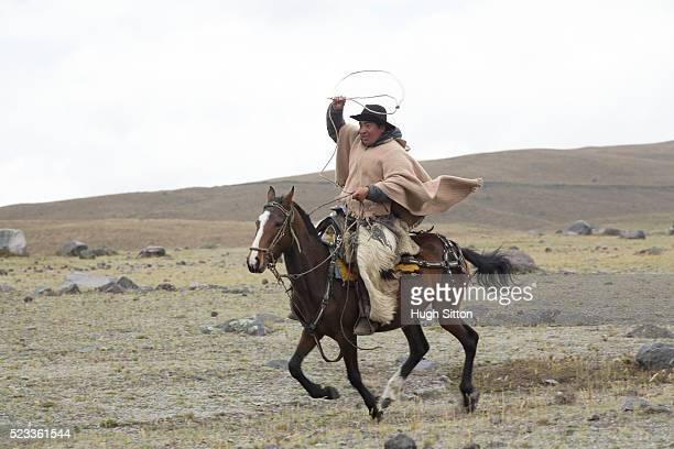 cowboy in traditional costume on horseback, cotopaxi national park, ecuador - hugh sitton stock pictures, royalty-free photos & images