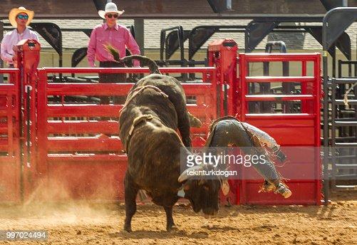 Cowboy Ist Bei Wilden Bullenreiten Wettbewerb Rodeo