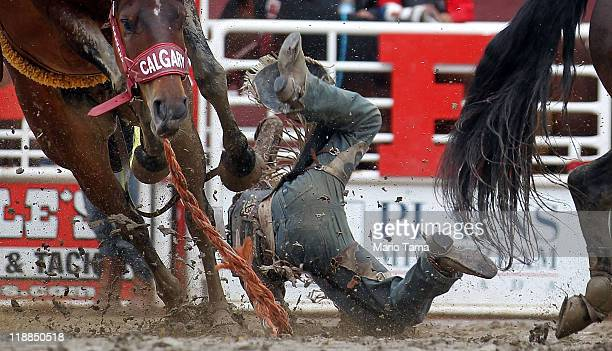 A cowboy is tossed off his horse in the rodeo at the Calgary Stampede on July 11 2011 in Calgary Alberta Canada The ten day event drawing over one...