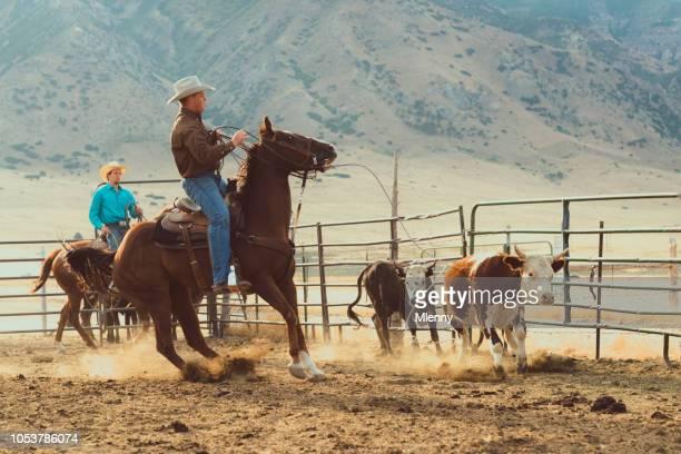 Cowboy Lassoing Young Bull