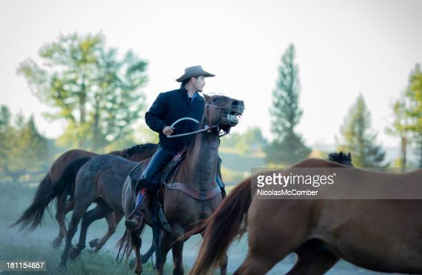cowboy leading horses at dawn - montana western usa stock pictures, royalty-free photos & images