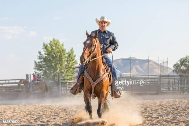 vaqueiro puxa para trás sobre as rédeas para parar seu cavalo enquanto andava em uma arena - estadio de los cowboys - fotografias e filmes do acervo