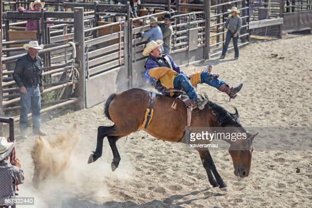 Cowboy rider in a Rodeo, Utah, USA