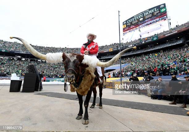 A cowboy rides a longhorn during the second period of the 2020 NHL Winter Classic between the Nashville Predators and the Dallas Stars at Cotton Bowl...