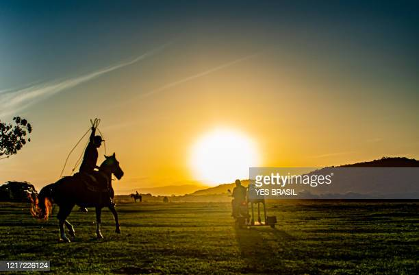 "a cowboy riding a ""creole"" horse trying to tie a mechanical cow - sequence scenes to show step-by-step loop techniques - criollo stock pictures, royalty-free photos & images"