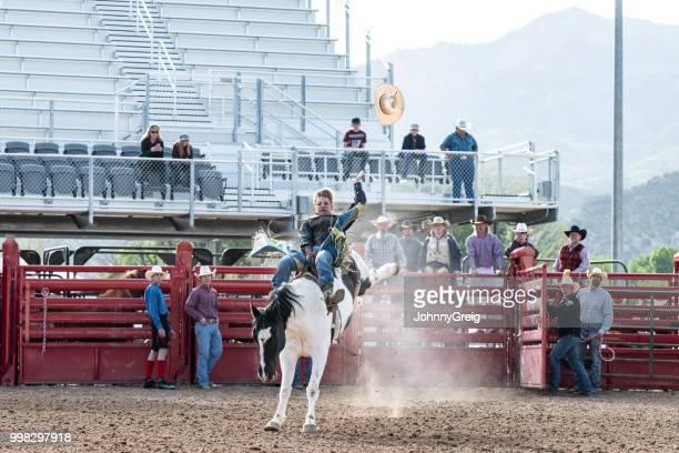 cowboy riding bucking bronco in rodeo stadium - bronco stadium stock pictures, royalty-free photos & images