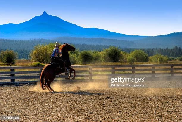 Cowboy riding bucking horse